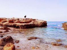 #pebblebeach #bimmah #oman #tiwi #muscat #holiday #vacation #vacationmood #naturelovers #naturegood #seaside #sea #beachlover #blue #bluesea #bluesonthegreen #beachday #watercolor #sand #bluesky #clouds #summer #sea #ocean #love #instagood #travellust #travel #beachtime #montereylocals #pebblebeachlocals - posted by Akhila Manmadhan https://www.instagram.com/akhila_manmadhan - See more of Pebble Beach at http://pebblebeachlocals.com/