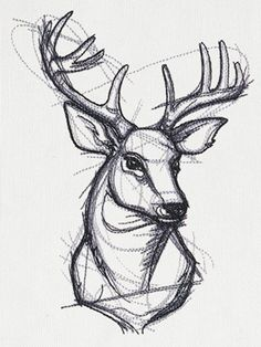 Sketchwork Stag design from Pencil Art Drawings, Art Drawings Sketches, Tattoo Sketches, Cute Drawings, Tattoo Drawings, Sketch Style Tattoos, Animal Sketches, Animal Drawings, Deer Sketch