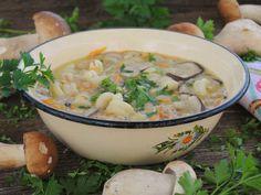 Zupa ze świeżych leśnych grzybów - medium