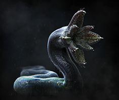 Lovecraft's Dhole by Joseph Diaz Monster Concept Art, Alien Concept Art, Creature Concept Art, Fantasy Monster, Monster Art, Creature Design, Alien Creatures, Fantasy Creatures, Mythical Creatures