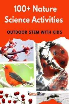 natural science activities for kids, and 50+ natural science apps for kids, from preschool to high school and college. Easy and fun learning for kids. Nature Activities, Science Activities For Kids, Stem Science, Camping Activities, Science And Nature, Toddler Activities, Science Projects, Stem Learning, Learning Resources