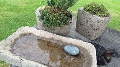 Make flower pots from cement yourself- Blumentöpfe aus Zement selber herstellen Flower pots and a birdbath made of cement. Unusual Flowers, Diy Flowers, Container Flowers, Container Plants, Cement Flower Pots, Flower Pot Design, Fleurs Diy, Recycled Garden, Diy Garden Projects