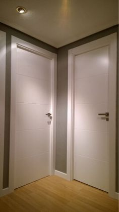 White Interior Doors With Glass Replacing Interior Doors, Interior Double French Doors, White Interior Doors, French Doors Patio, White Doors, Modern Interior, Patio Doors, Entry Doors, Front Doors