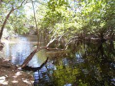 Laguna y Arroyo Itabo, Haina, R.D.