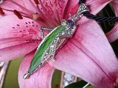 Grasshopper  #Barbara Bixby enhancer