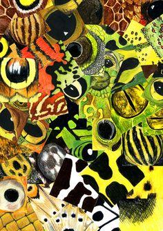 Illustration, Evolution and Frogs - copyright Ann Dadd Frogs, Portfolio Design, Evolution, Ann, Graphic Design, Halloween, Illustration, Painting, Decor