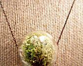 Live Moss Glass Hanging Terrarium Pendant Necklace