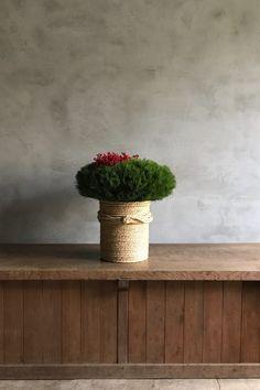 お正月飾り 其の二 . 門松 – tsubaki-tokyo Ikebana Flower Arrangement, Floral Arrangements, Green Flowers, Colorful Flowers, New Years Decorations, Christmas Decorations, Japanese New Year, Nouvel An, Green Life