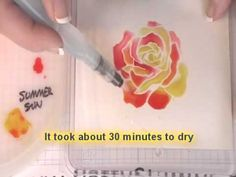 Watercolor Roses with Aqua painters