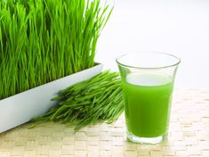 How to grow wheat grass and why | Posted by: TheWheatGrassJuicer.com