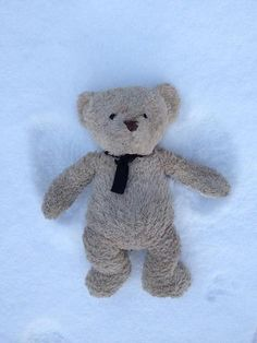 Misery Bear goes angelic