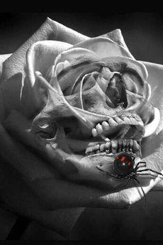 Rose skull Dark Art Tattoo, Light Tattoo, I Tattoo, Badass Tattoos, Great Tattoos, Beautiful Tattoos, Skull Rose Tattoos, Body Art Tattoos, Tatoos