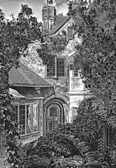 ~cottage drawing~ beautiful~