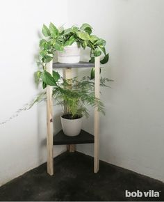 DIY Plant Stand Tutorial (with Photos) + 5 Other Ideas - Bob Vila Windowsill gardens are so last season. Instead, build a DIY plant stand to show off both your green thumb and your craftsmanship. Modern Plant Stand, Wood Plant Stand, Plant Stands, Hanging Plants, Indoor Plants, Indoor Gardening, Container Gardening, Corner Plant, Plant Aesthetic