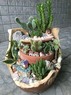 DIY Miniature Fairy Garden Ideas to Bring Magic Into Your Home A fairy garden made with cacti!A fairy garden made with cacti! Mini Cactus Garden, Fairy Garden Pots, Cactus House Plants, Succulent Gardening, Garden Terrarium, Planting Succulents, Cactus Garden Ideas, Cactus Decor, Cactus Art
