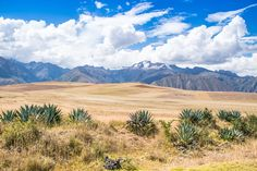 Between Maras & Moray - Sacred Valley Peru by voyageway #travel #traveling #vacation #visiting #trip #holiday #tourism #tourist #photooftheday #amazing #picoftheday