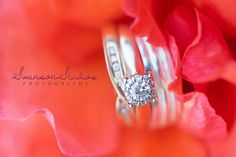 Red rose with wedding rings. Swanson Studios, Auckland wedding