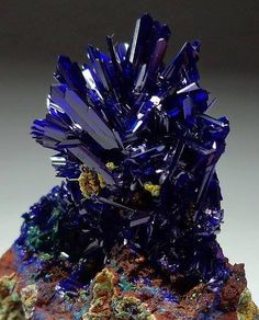 "themineralandgemassassin: ""Azurite from El Cobra Mine, Mexico. Collector's azurite crystals mostly came from Chessy in France (the oldest mine since the Morenci and Bisbee in Arizona, Tsumeb in Namibia, and Touissit in Morocco. Cool Rocks, Beautiful Rocks, Minerals And Gemstones, Rocks And Minerals, Mineral Stone, Rocks And Gems, Stones And Crystals, Gem Stones, Healing Crystals"