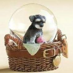 Charlie snow globe