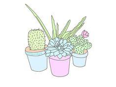 Imagen de plants, overlay, and cactus