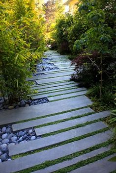 Cut stone path combined with dark smooth pebbles and softened with moss-like plant.