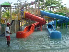 Waterbom Park in Bali. A good water park that will keep the kids entertained all day. Stuff To Do, Things To Do, Bali, Entertaining, Water, Kids, Things To Make, Gripe Water, Young Children