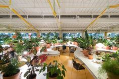 SelgasCano adds plant-filled workspace to Lisbon market hall for Second Home
