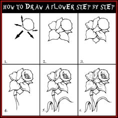 drawing flowers step by step