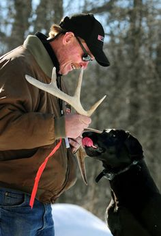 In a Tuesday, March 2, 2009 photo, dog trainer Tom Dokken rewards his 5-year-old Labrador retriever Rookie after the dog retrieved antlers hidden in the woods near Dokken's property in rural Northfield, Minn. Dokken has developed a training system to teach dogs to find shed antlers left by deer. (Ben Garvin/St. Paul Pioneer Press via AP)