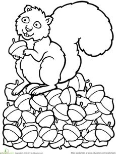 Color the Squirrel Worksheet