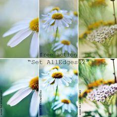 free Photoshop actions - AlexEdg photography #freebie #photography #photoshop