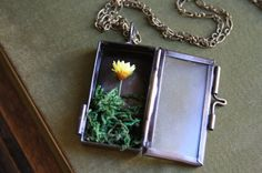 A Touch of Yellow - Daisy Terrarium Shadowbox Necklace - Woodland, Nature Jewelry
