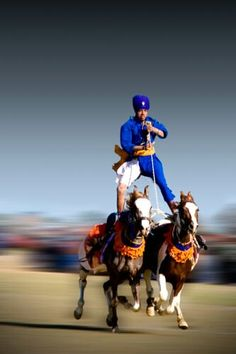 A man rides two galloping horses at the Indian Rural Olympics! It's a far cry from London 2012 but looks like a lot of fun! Indian Flag Photos, Lion Live Wallpaper, Punjabi Culture, Modern India, Indian Horses, Warrior Tattoos, Amazing India, Rural India, History Of India