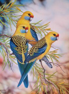 Paintings for Sale – Lyn Cooke Artist Cute Birds, Pretty Birds, Beautiful Birds, Animals Beautiful, Vogel Illustration, Vintage Bird Illustration, Love Birds Drawing, Bird Drawings, Exotic Birds