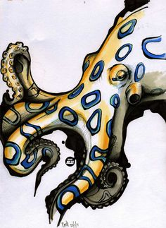 Blue ringed octopus by ~SpaceJelly on deviantART Octopus Artwork, Octopus Drawing, Octopus Pictures, Octopus Tattoos, Beach Watercolor, Animal Totems, Tentacle, Sea Creatures, Art Inspo