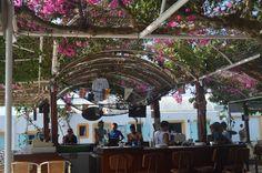 Bar da piscina no Santorini Youth Hostel