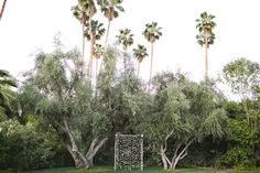 Parker Palm Springs wedding: Ali + Brett