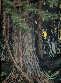 """Cedar Swamp"" woodblock print by Elizabeth Colborne Woodblock Print, Linocut Prints, Art Prints, Block Prints, Gravure Photo, Arts And Crafts Movement, Wood Engraving, Tree Art, American Art"