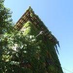 casa modernista a Centelles Elegante Casa construïda a l' entorn de l' any 1925 com a casa d' estiueig. Es troba situada a una de les millors urbanitzacions de Centelles ( el Bellesguard) i destaca arquitectònicament per la seva simetria i estucats – esgrafiats a la façana. Disposa d' un ampli jardí (500m2) amb piscina privada.  La composició de la casa ( a quatre vents i orientada el sud, sobre un turonet), fa que tingui unes vistes excepcionals. La casa s' estructura en tres plantes.