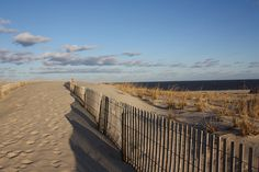 The Great Dunes @ Cape Henlopen State Park in Lewes, Delaware