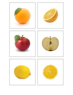 Fruit - inside and out. Cooking Classes For Kids, Cooking With Kids, Fruit And Veg, Fruits And Vegetables, Montessori Activities, Activities For Kids, Image Fruit, Art For Kids, Crafts For Kids