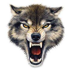 Potisky triček s motivy: psi,kočky,ryby,koně,zoo+les a lov,sport,celebrity,humor, outdoor,děti,draci a lebky,Amerika,army