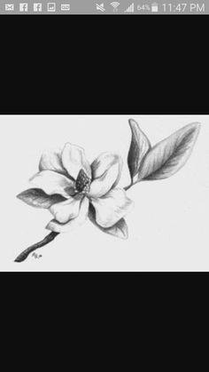 Magnolia Tattoo, Tattoo Inspiration, Beautiful Flowers, Tattoos, Tatuajes, Pretty Flowers, Japanese Tattoos, Tattoo, Tattoo Illustration