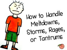 Handling stormy behavior ~ Great post! (Hope you don't need it . . . . )