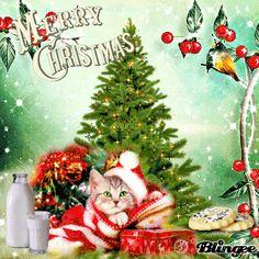 Merry Christmas My Friend :)
