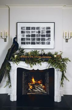 peacock    via Peacock Feathers for Holiday - Design Inspiration - Lonny