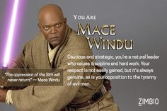 I'm Mace Windu - This is absolutely laughable - since he is the only character I actually despised in Star Wars!