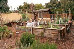 raised gardening beds - I like the hoops...can make mini green houses...
