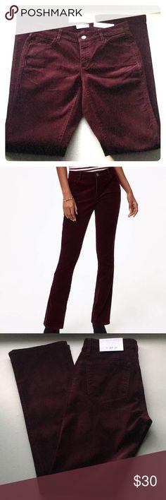 NWT Ripened Plum Curvy Boot Cut Corduroy Pants LOFT Womens 6