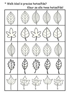 * Welk blad is hetzelfde? Activities For 2 Year Olds, Autumn Activities, Book Activities, Kindergarten Math Worksheets, Leaf Template, Fall Preschool, Math For Kids, Tot School, Kids Education